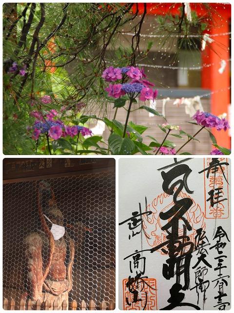 紫陽花と仁王像と御朱印
